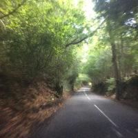 Leith Hill, Surrey