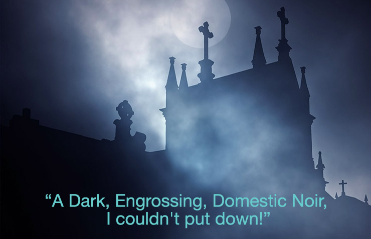 "Review of Rosebrook Chronicles ""A Dark, engrossing Domestic Noir I couldn't put down."""